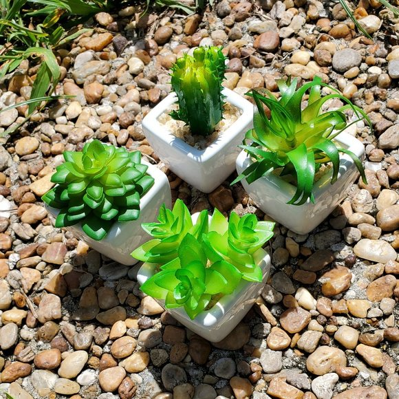 Other - Mini Artificial Succulents